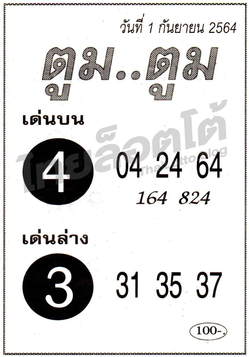 หวยซอง หวยตูมตูม-010964