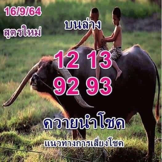 หวยซอง หวยพี่ควายคนโก้-160964_1